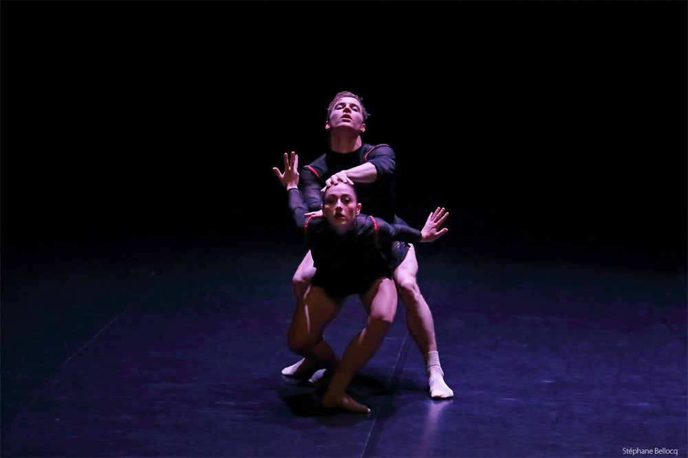 stephane-bellocq-lee-illicite-danse-bayonne-2019_7770_web
